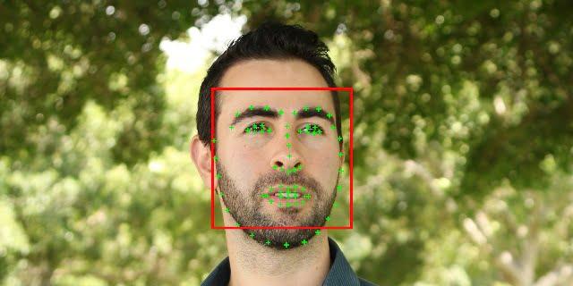 نقاط مهم چهره در تشخیص چهره