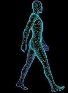 بیومتریک حرکت بدن