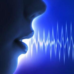 شناسایی هویت از طریق صدا